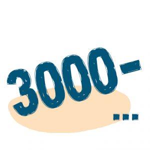 от 3000 ₽