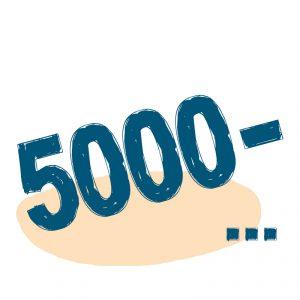 от 5000 ₽